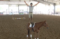 Ocala Horse Properties Eventing Prix Invitational Livestream